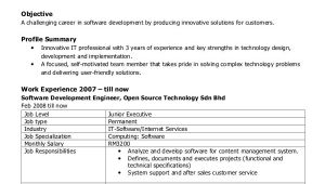 Software Engineer Resume Responsibilities Sample software Engineer Resume 8 Examples In Word Pdf