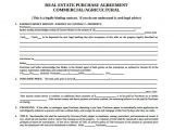 Spokesperson Contract Template Real Estate Purchase Agreement Samples Templates