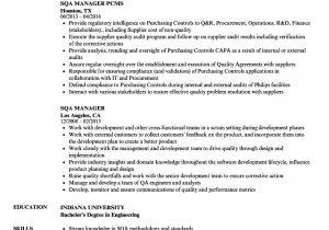 Sqa Resume Sample Sqa Manager Resume Samples Velvet Jobs