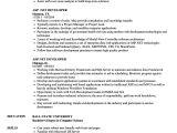 Sql Basic Resume Ms Sql Developer Resume Sample Resume Samples Free