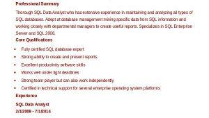 Sql Data Analyst Resume Sample 9 Data Analyst Resume Examples Pdf Doc Free
