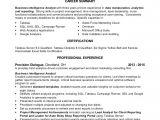 Sql Data Analyst Resume Sample Data Analyst Resume Ron Banonis