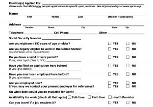 Standard form Of Resume Sample Free Blank Resume forms Printable Application form Job