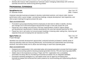 Standard form Of Resume Sample Standard Resumes Free Excel Templates