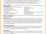 Standard Resume format In Word 6 Curriculum Vitae Download In Ms Word theorynpractice