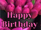Stevie Wonder Singing Happy Birthday Card 910 Best Birthday 2 Images In 2020 Birthday Wishes Happy