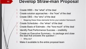 Straw Man Proposal Template Business Development for Small Government Contracting