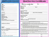 Stud Dog Contract Template Contracts