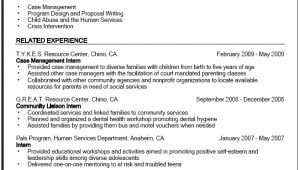 Student Government Resume Sample Government Resume Sample Career Center Csuf