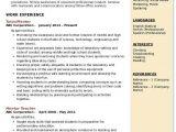 Student Mentor Resume Mentor Resume Samples Qwikresume