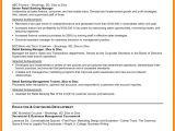 Student Resume Headline 7 Cv Headline Example theorynpractice