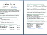 Student Resume Length Cv Two Pages Example