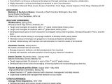 Student Resume Skills and Qualifications Resume Skills Summary Examples Example Of Skills Summary