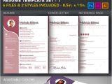 Stylish Resume Templates 10 Hair Stylist Resume Template Free Pdf Word Psd
