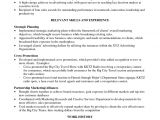Summary for Basic Resume the Best Summary Of Qualifications Resume Examples