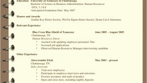 Suzy Q Student Resume Resume Writing Sb for Students