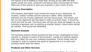 T Shirt Business Plan Template Free Business Plan Sample Pdf Of T Shirt Company Business