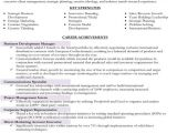 Targeted Resume Sample Targeted Resume Sample Best Professional Resumes