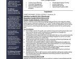 Teacher Resume Template Free Elementary School Teacher Resume Free Cv Resume Template