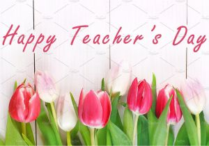 Teachers Day Card Vector Free Download Happy Teachers Day with Tulip Flower Message for Teacher In