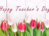 Teachers Day New Greeting Card Happy Teachers Day with Tulip Flower Message for Teacher In