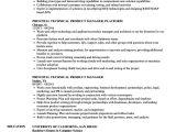 Technical Manager Resume Samples Enterprise Risk Management Resume Google Technical Skills