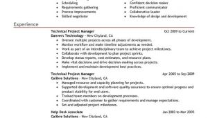 Technical Manager Resume Samples Technical Project Manager Resume Examples Free to Try