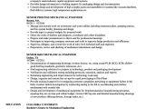 Technical Skills for Mechanical Engineer Resume Mechanical Senior Mechanical Engineer Resume Samples