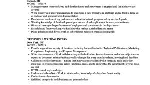 Technical Writer Resume Sample Technical Writer Resume Ipasphoto