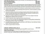 Telecom Sales Executive Resume Sample 30 Basic Sales Resume Templates Pdf Doc Free