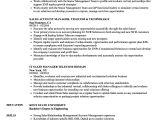 Telecom Sales Executive Resume Sample Telecom Sales Resume Samples Velvet Jobs