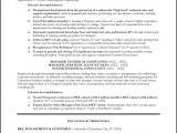 Telecom Sales Executive Resume Sample Telecommunications Executive Resume Sample