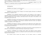 Terms and Conditions Of Employment Template 6 Sample Sales Employment Agreements Sample Templates