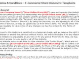 Terms and Conditions Template Ecommerce Terms Condition Ecommerce Store Document Templates