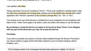 Terms and Conditions Template for Online Shop 9 Terms and Conditions Samples Sample Templates
