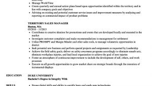 Territory Sales Manager Resume Template Territory Sales Manager Resume Resume Ideas