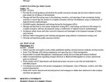 Test Lead Resume Sample India Test Lead Resume Nmdnconference Com Example Resume and