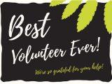 Thank You Volunteer Card Wording Volunteer Thank You Notes