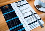 The Complete Job Interview Resume/linkedin & Network Guide Free Download Ultimate Collection Of Free Professional Resume Templates