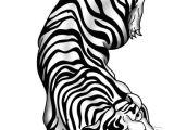 Tiger Tattoo Template Crawling Chinese Tiger Tattoo Sample
