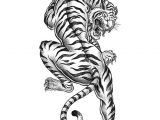 Tiger Tattoo Template Tiger Tattoo Coloring Page Favecrafts Com