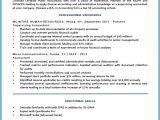Timeless Basic Resume Basic Resume Template Timeless Design Template Resume
