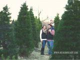Tree Farm Business Plan Template Christmas Tree Farm Near Me Sanjonmotel