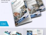 Tri Fold Brochure Template Download Brochure Templates Pdf Free Download Csoforum Info