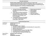 Uat Tester Resume Sample Uat Testing Resume Keni Candlecomfortzone Com