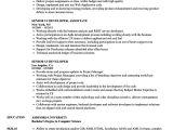 Ui Developer Sample Resume Senior Ui Developer Resume Samples Velvet Jobs