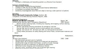 Ultrasound Tech Resume Template Ultrasound Technician Resume 6 Free Pdf Documents