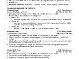 University Student Resume Present and Promote Martinyordanov1221889