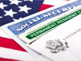 Uscis Green Card Background Check 130 Best Green Card organization Images In 2020 Green