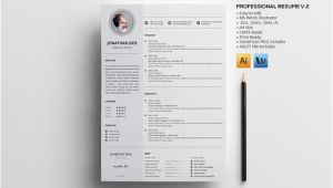 V Professional Resume Professional Resume V 2 Resume Templates On Creative Market